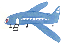 plane-300w